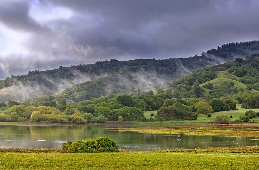The serene Stafford Lake, Novato.